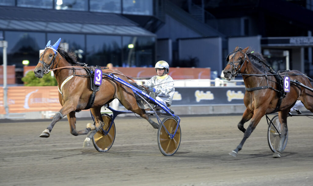 TR Bild. Bild för fri publicering t.o.m. 2020-08-26. Foto: Lars Jakobsso