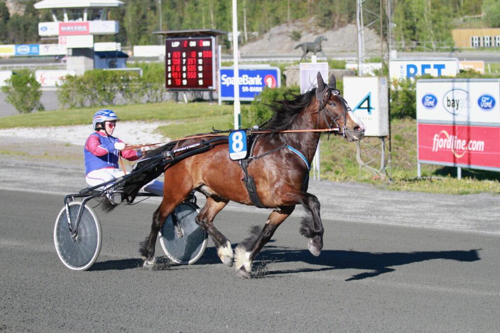Frier Birk_Anette Frønes_Sørlandet 12052019