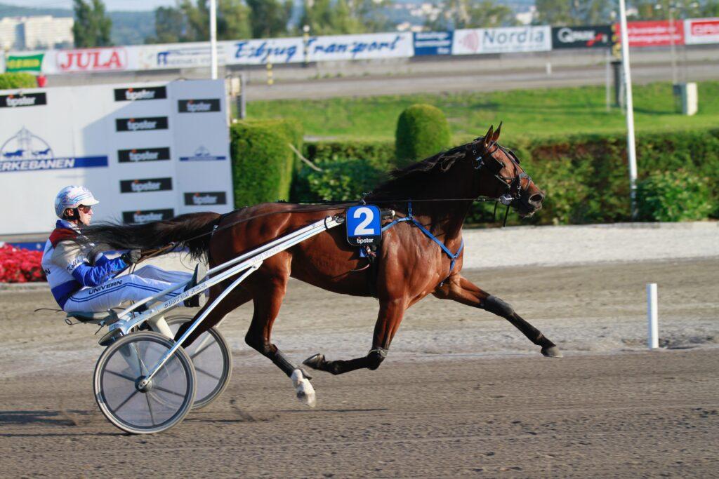 Lucky Queen Soa_Lars Anvar Kolle_Bjerke 26082019
