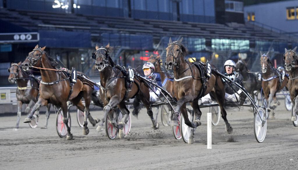 TR Bild. Bild för fri publicering t.o.m. 2020-09-18. Foto: Lars Jakobsso