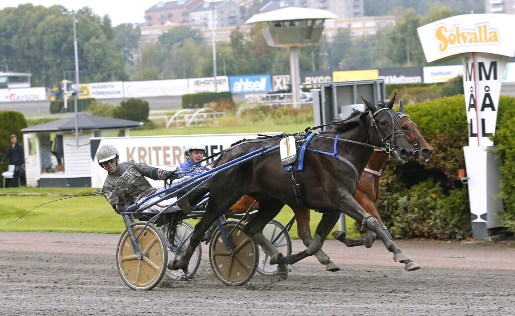 TR Bild. Bild för fri publicering t.o.m. 2020-10-03. Foto: Maria Holmén Eagle Eye Sherry med Stefan Persson vinner V75-4, Svenskt Trav-Oa