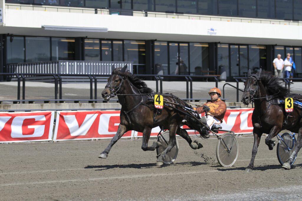 Stensvik Martin_Bjørn Steinseth_Bjerke25062015