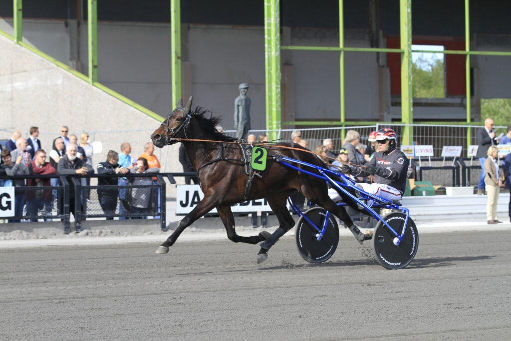 Cash Okay - Geir Vegard Gundersen - Jarlsberg 150523