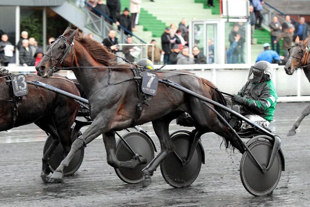 27/02/2014 VINCENNES;PARIS PRIX EMILE ALLIX COURBOY - CE TIERCE TIERCE SMORGON Marco (Driver);SMORGON Marco (Entraineur);SCUDERIA 4 A. B. SAS (Casaque) OROPURO BAR